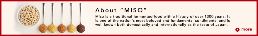 About MISO